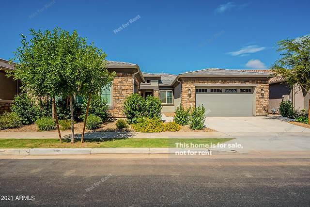 5360 S Joplin, Mesa, AZ 85212 (MLS #6279149) :: Klaus Team Real Estate Solutions