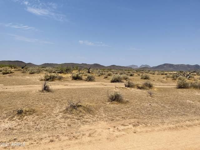 61XX S 386TH Avenue, Tonopah, AZ 85354 (MLS #6279221) :: The Daniel Montez Real Estate Group
