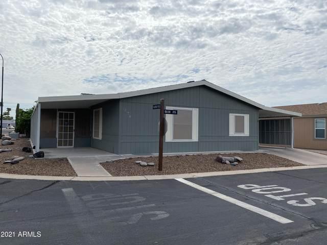 2400 E Baseline Avenue #270, Apache Junction, AZ 85119 (MLS #6279265) :: Zolin Group