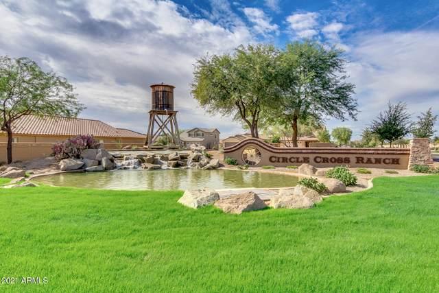 1144 W Paisley Drive, San Tan Valley, AZ 85143 (MLS #6279297) :: The Ellens Team