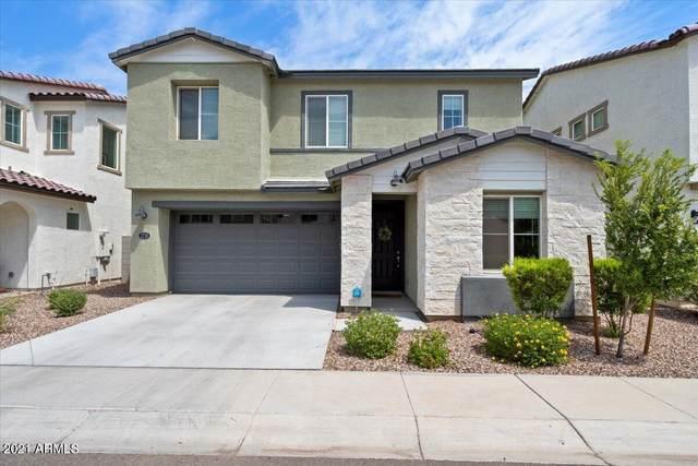 3718 E Cheery Lynn Road, Phoenix, AZ 85018 (MLS #6279340) :: Zolin Group