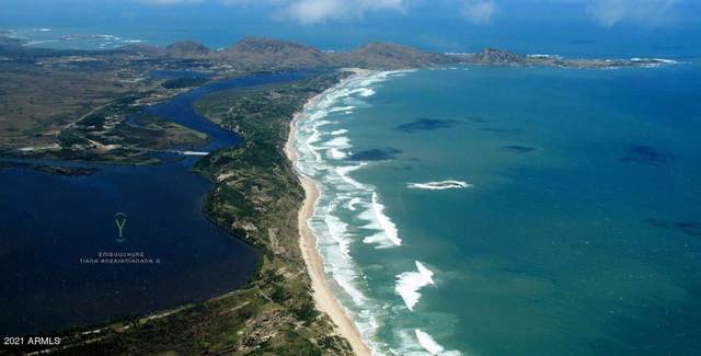123 SE Development Site Madagascar Land SE, Outside of USA, AZ 00000 (MLS #6279439) :: The Daniel Montez Real Estate Group