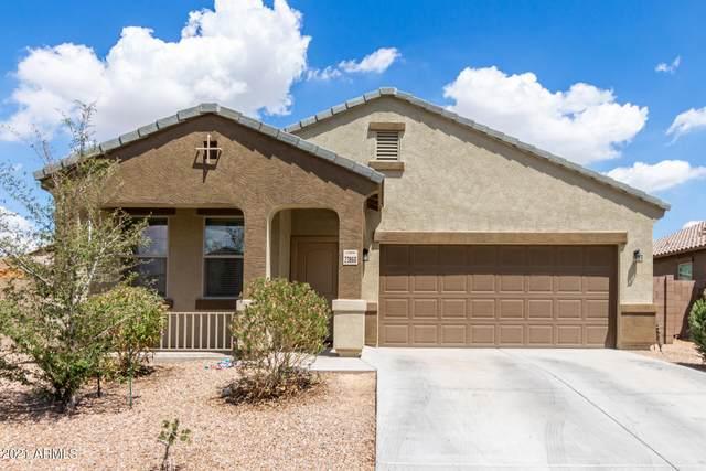 23860 W Wier Avenue, Buckeye, AZ 85326 (MLS #6279464) :: Elite Home Advisors