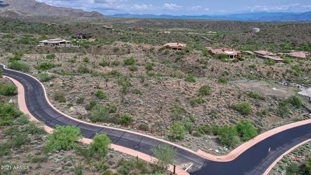 14256 E Lone Wolf Trail, Fountain Hills, AZ 85268 (MLS #6279532) :: Fred Delgado Real Estate Group
