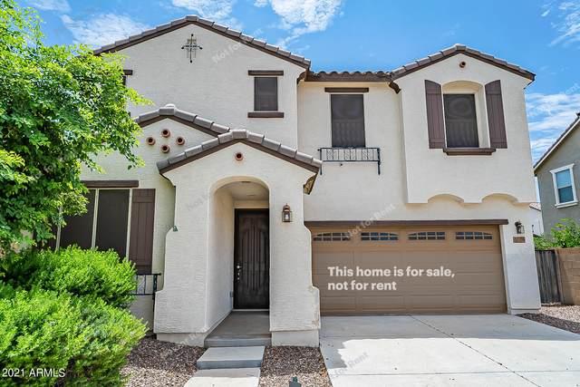 20961 E Via De Olivos, Queen Creek, AZ 85142 (MLS #6279559) :: Elite Home Advisors