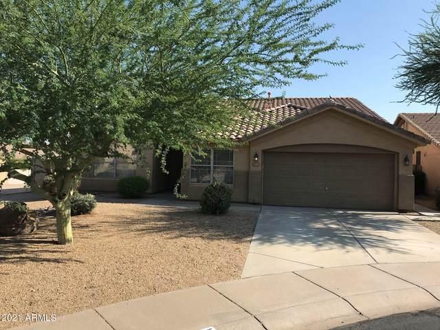 11535 S Morningside Drive, Goodyear, AZ 85338 (MLS #6279808) :: Elite Home Advisors