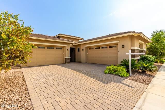 10563 E Hawk Avenue, Mesa, AZ 85212 (MLS #6279937) :: Yost Realty Group at RE/MAX Casa Grande