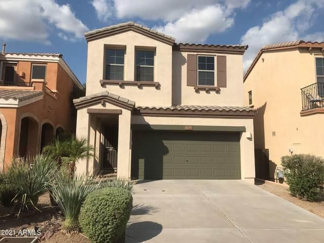 1544 W Satinwood Drive, Phoenix, AZ 85045 (MLS #6280033) :: CANAM Realty Group