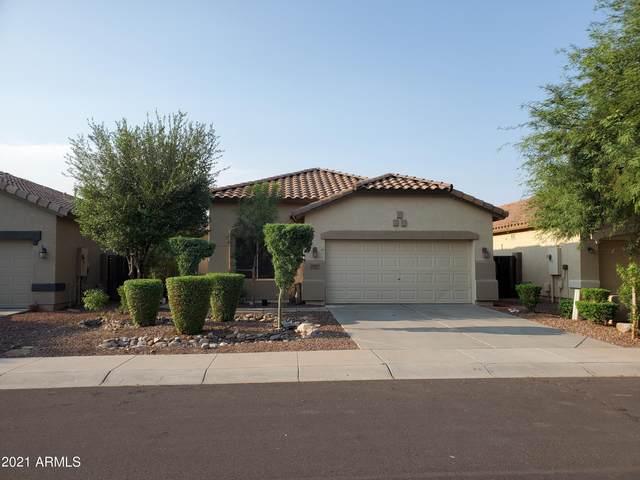 12612 W Campina Drive, Litchfield Park, AZ 85340 (MLS #6280125) :: Elite Home Advisors