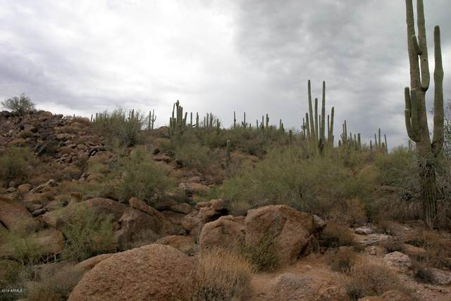 66xx E Military Road, Cave Creek, AZ 85331 (MLS #6280197) :: The Copa Team | The Maricopa Real Estate Company