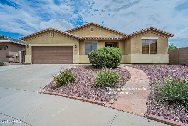 6404 W Black Hill Road, Phoenix, AZ 85083 (MLS #6280215) :: Klaus Team Real Estate Solutions
