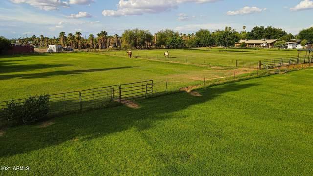 7934 W Orangewood Avenue, Glendale, AZ 85303 (MLS #6280216) :: Yost Realty Group at RE/MAX Casa Grande