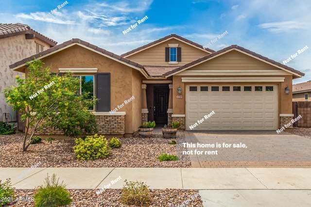 20749 E Raven Drive, Queen Creek, AZ 85142 (MLS #6280239) :: Elite Home Advisors
