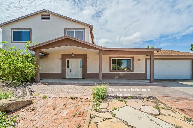 1817 E Paradise Lane, Phoenix, AZ 85022 (MLS #6280240) :: Elite Home Advisors