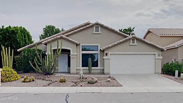 23027 N 21ST Way, Phoenix, AZ 85024 (MLS #6280271) :: Yost Realty Group at RE/MAX Casa Grande
