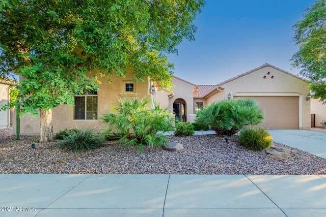 6457 W Willow Way, Florence, AZ 85132 (MLS #6280320) :: Elite Home Advisors