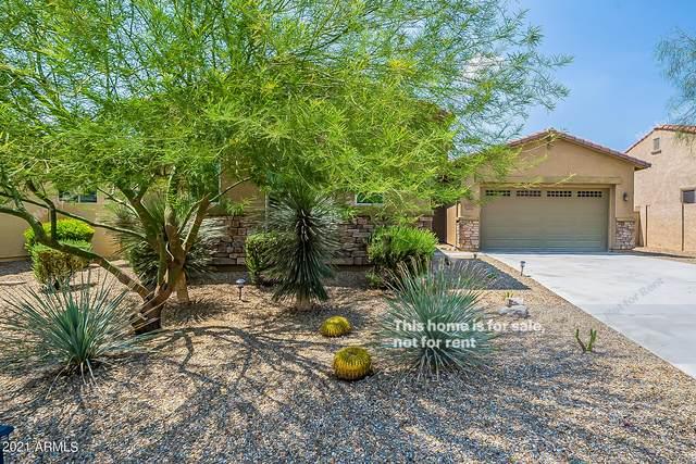 15312 S 181ST Drive, Goodyear, AZ 85338 (MLS #6280359) :: Klaus Team Real Estate Solutions