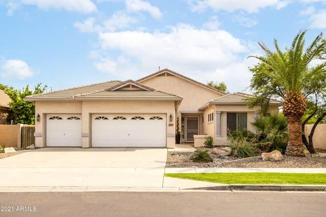 3223 E Page Avenue, Gilbert, AZ 85234 (MLS #6280503) :: Yost Realty Group at RE/MAX Casa Grande