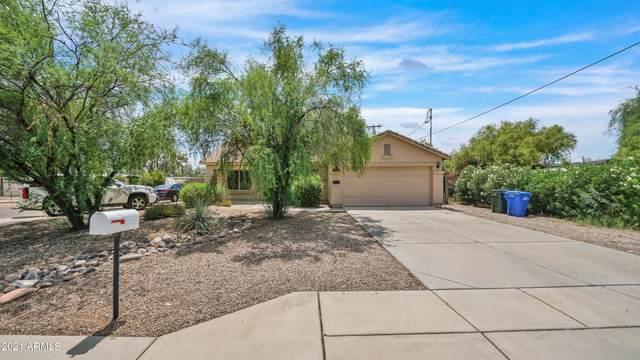 2229 E Grovers Avenue, Phoenix, AZ 85022 (MLS #6280674) :: Yost Realty Group at RE/MAX Casa Grande