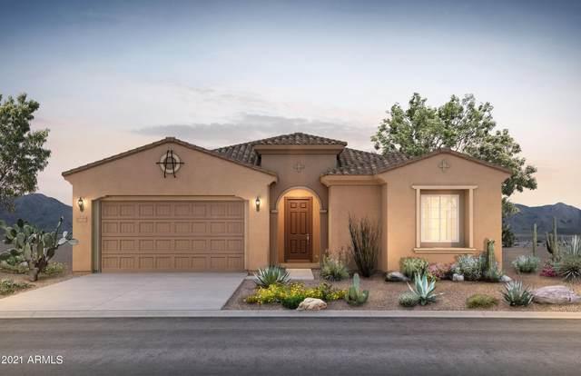 32330 N 133RD Drive, Peoria, AZ 85383 (MLS #6280743) :: Elite Home Advisors