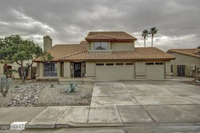 4041 E Cholla Canyon Drive, Phoenix, AZ 85044 (MLS #6280981) :: Elite Home Advisors