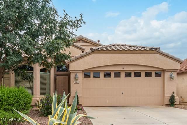 3883 E Hematite Lane, San Tan Valley, AZ 85143 (MLS #6281010) :: The Dobbins Team