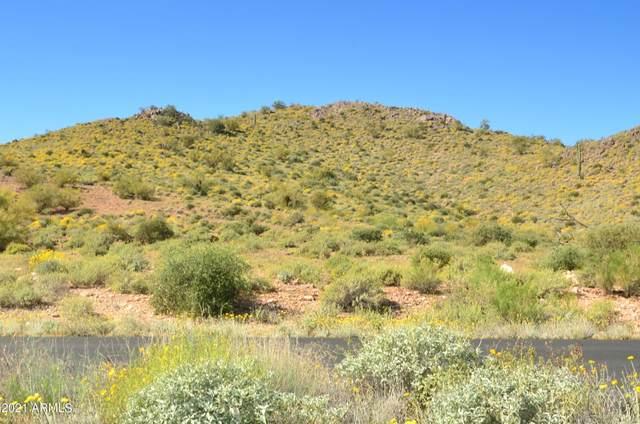 3842 S Summit Trail, Gold Canyon, AZ 85118 (MLS #6281078) :: ASAP Realty