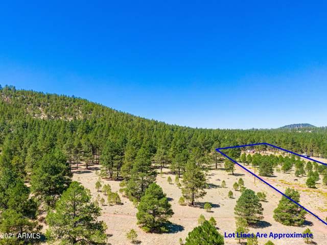 958 S Appaloosa Trail, Williams, AZ 86046 (MLS #6281193) :: Klaus Team Real Estate Solutions