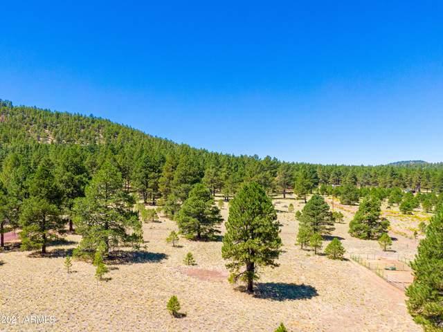 970 S Appaloosa Trail, Williams, AZ 86046 (MLS #6281195) :: Klaus Team Real Estate Solutions