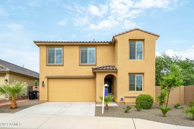 7904 S 24TH Place, Phoenix, AZ 85042 (MLS #6281258) :: Elite Home Advisors