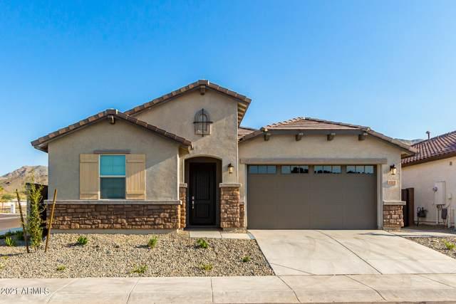 1517 W Carmen Street, Phoenix, AZ 85041 (MLS #6281504) :: Elite Home Advisors