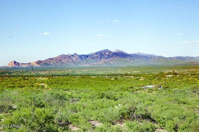 1 Vista De Torres Lane, Tubac, AZ 85646 (MLS #6281670) :: Conway Real Estate