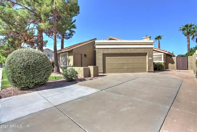 254 S Lakeview Boulevard, Chandler, AZ 85225 (MLS #6281723) :: Klaus Team Real Estate Solutions
