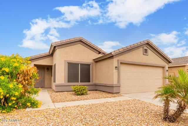 24589 N Shelton Way, Florence, AZ 85132 (MLS #6281805) :: Yost Realty Group at RE/MAX Casa Grande