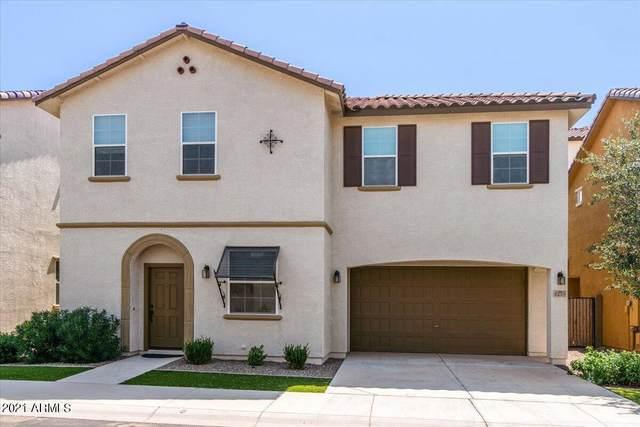 4259 E Toledo Street, Gilbert, AZ 85295 (MLS #6281886) :: Hurtado Homes Group