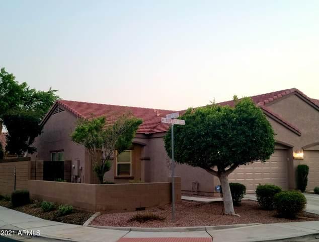 8733 W Surrey Avenue, Peoria, AZ 85381 (MLS #6281942) :: Yost Realty Group at RE/MAX Casa Grande