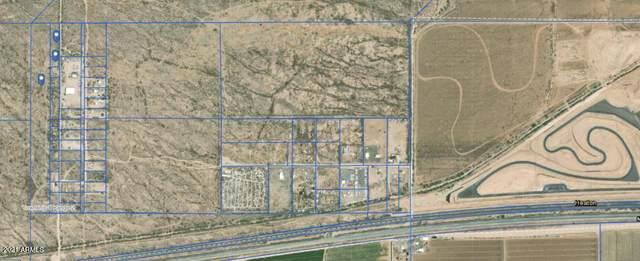10 Rio Bravo Drive, Maricopa, AZ 85138 (MLS #6281948) :: ASAP Realty