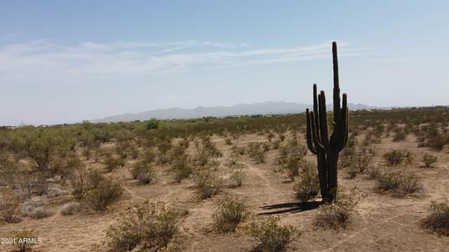 296xx N 255th Avenue, Wittmann, AZ 85361 (MLS #6281949) :: West Desert Group   HomeSmart
