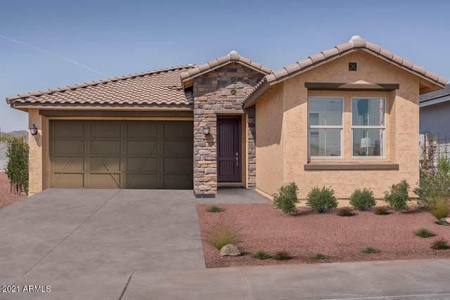 4342 N 197TH Drive, Litchfield Park, AZ 85340 (MLS #6282013) :: The Riddle Group