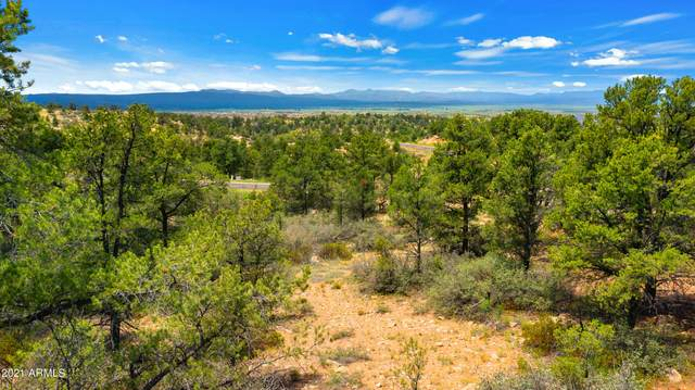 15330 N Long View Lane, Prescott, AZ 86305 (MLS #6282036) :: Fred Delgado Real Estate Group
