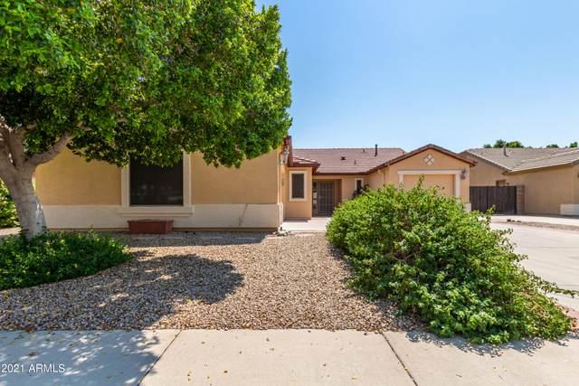 16317 W Ironwood Street, Surprise, AZ 85388 (MLS #6282169) :: Elite Home Advisors