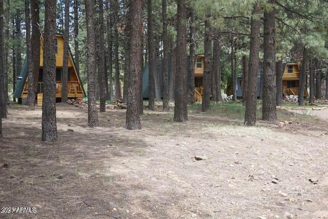 793 Bills Loop, Forest Lakes, AZ 85931 (MLS #6282285) :: Elite Home Advisors