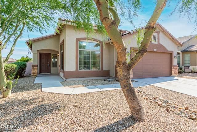 41155 W Laramie Road, Maricopa, AZ 85138 (MLS #6282315) :: Elite Home Advisors