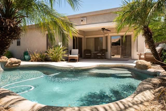 21164 E Bonanza Way, Queen Creek, AZ 85142 (MLS #6282385) :: NextView Home Professionals, Brokered by eXp Realty