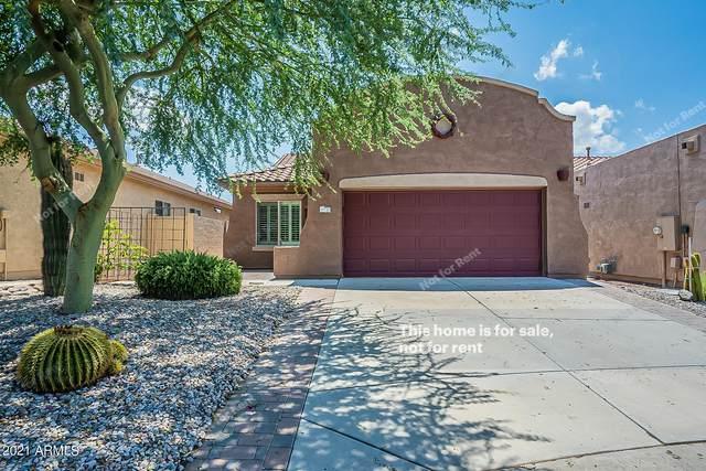11133 E Frog Tanks Court, Gold Canyon, AZ 85118 (MLS #6282462) :: Elite Home Advisors