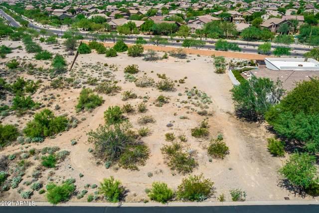 3450 N Ladera Circle, Mesa, AZ 85207 (MLS #6282577) :: Arizona Home Group