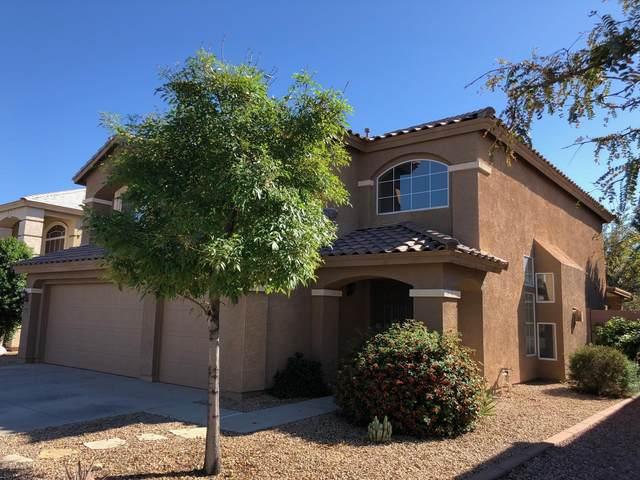 15619 W Calavar Road, Surprise, AZ 85379 (MLS #6282593) :: Nate Martinez Team