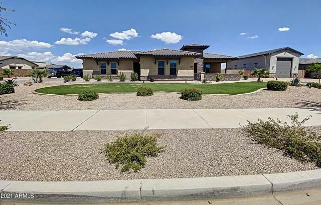 21022 E Aquarius Way, Queen Creek, AZ 85142 (MLS #6282697) :: CANAM Realty Group