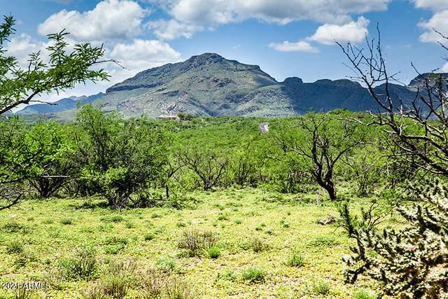24 Rolling Pin Lane, Tubac, AZ 85646 (MLS #6282747) :: Conway Real Estate