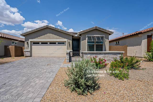 44000 W Palo Olmo Road, Maricopa, AZ 85138 (MLS #6282759) :: The Riddle Group